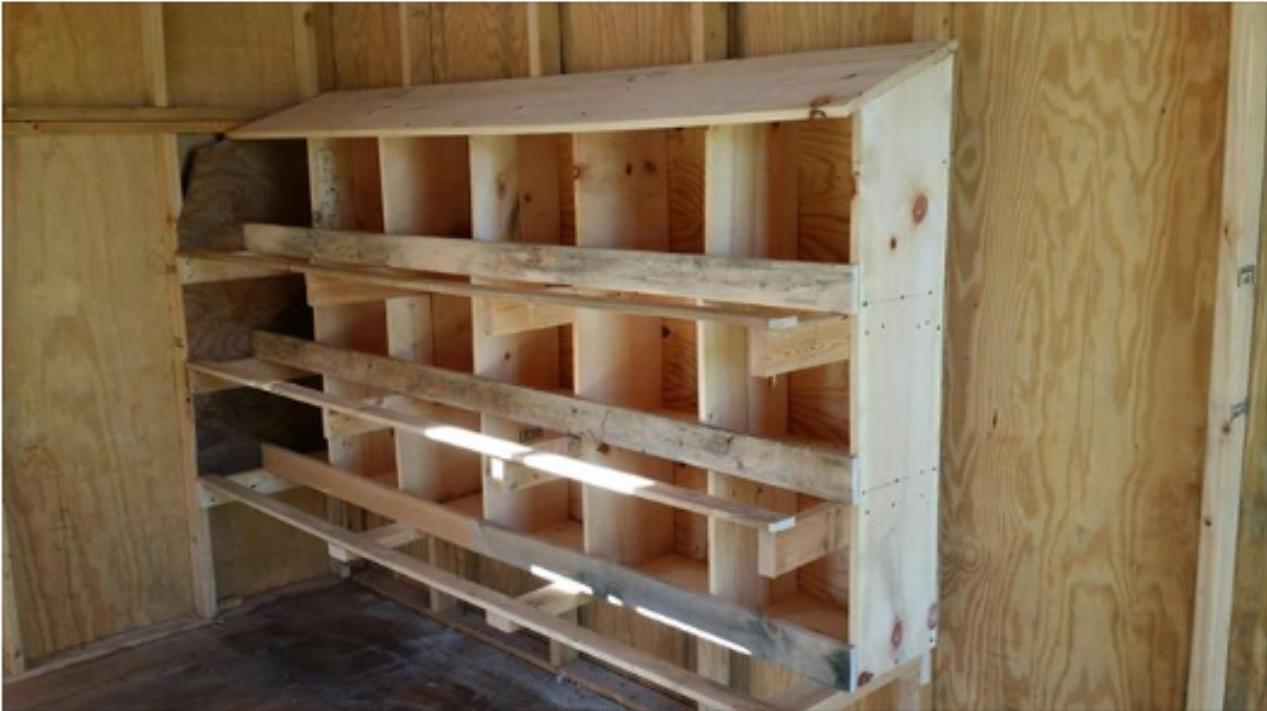 chicken coop construction